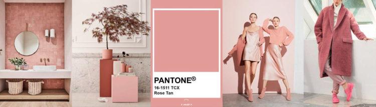 Rose Tan PANTONE 19-2428 Imagen compuesta con muestra de color + ejemplos de moda y decoración